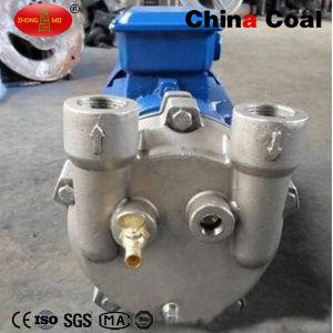 2BV Series Water Ring Vacuum Pump pictures & photos