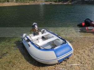 Hot Selling 15HP Electric Start Outboard Motor/ Marine Boat Engine pictures & photos