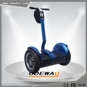 Outdoor Chariot off Road Electric Mobility Scooter
