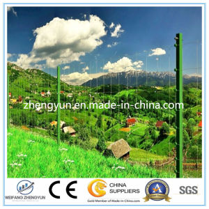 Hot Dipped Galvanized Wire Mesh Fixed Knot Fence /Field Fence pictures & photos