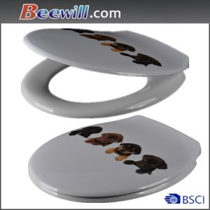Designed Decorative Customed Toilet Seat pictures & photos