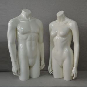 Male Female Upper Body Torso Mannequin Using on Table Mannequin pictures & photos