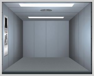 Expert Manufacturer of Freight Elevator pictures & photos