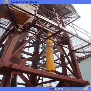 China Supplier Qtz Series Topkit Tower Crane Price pictures & photos