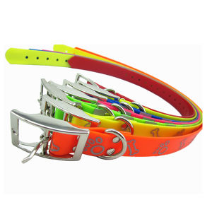 Multicolored Dog Collar (HST1134)