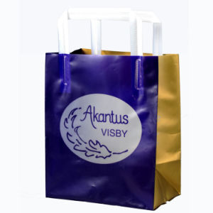 Stand up Printed HDPE Carrier Bags for Cosmetics (FLL-8372) pictures & photos
