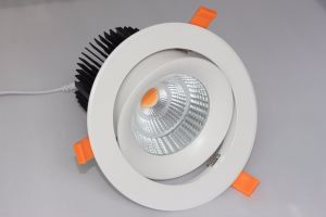 Super Brightness 50W LED COB Downlight with Ce/RoHS Approved pictures & photos