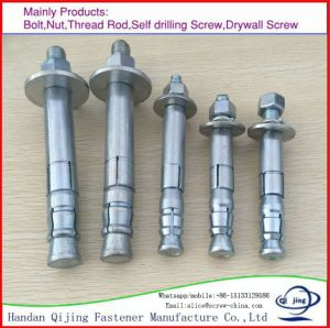 Machine Anchor, Zinc Plated, Stainless Steel, Expansion Elevator Anchor Bolt pictures & photos