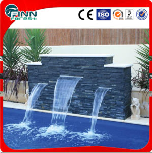 Stainless Steel Indoor or Outdoor SPA Pool Wall Fountain pictures & photos