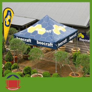 10X10FT Printing Canopy Tent with Flag pictures & photos