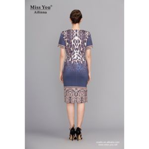 Miss You Alinna 101134 Printed Short Dress Distributor Digital Printed Slim Dress for All Women pictures & photos