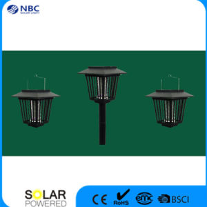 Solar LED Lighting with 2V Voltage pictures & photos