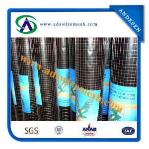 Hot Sale! Electroplate Galvanized Welded Wire Mesh Factory pictures & photos