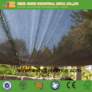 Building Safety Net/ Vegetable Use Shade Net pictures & photos