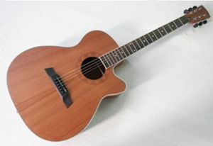 "40"" Acoustic Guitar (FB-40SC)"