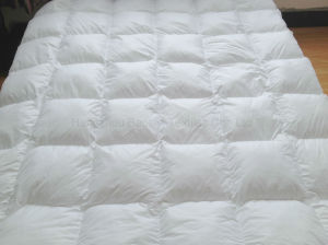 Microfiber Mattress Pad Box Stitched 233tc Cover pictures & photos