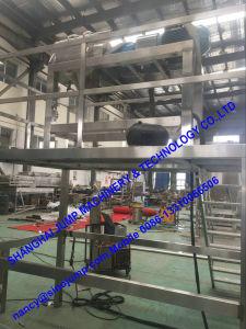 Complete Papaya Juice Processing Line/Production Line pictures & photos