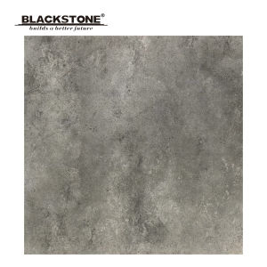 600X600mm Porcelain Rustic Floor Tiles with Grey Color (SG6096) pictures & photos