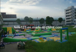 2013 Hot! Inflatable Water Park, Water Sports Games (13FL-W62)