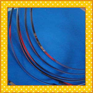 317L Narrow Stainless Steel Strip pictures & photos