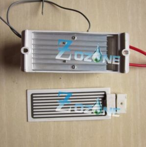 5g Ozone Generator Used with Ceramic Ozone Plate pictures & photos