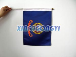 Digital Printing Flag Banner/Polyester Hand Flag pictures & photos