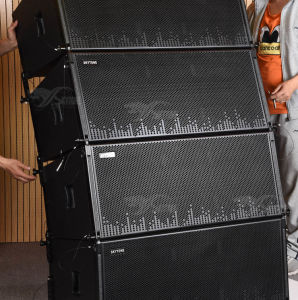 Dual 12 Inch Line Array Sound System PRO Audio Gear pictures & photos