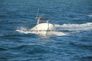 Liya 25feet Japan Vessels Twin Engine Boat pictures & photos