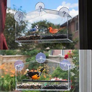 Large Acrylic Plexiglass Window Bird House for Amazon pictures & photos