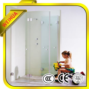 Solid Structure/Flat Shape Clear Tempered Glass for Bathroom Door Panel pictures & photos