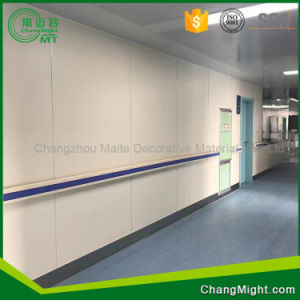 High Pressure Laminate/Formica Colors/Formica Wall Panels pictures & photos