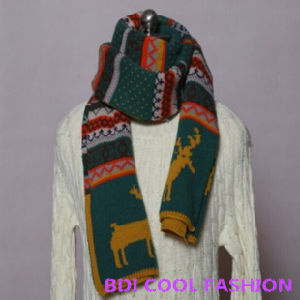 New Design Hot Selling Winter Scarf (Cyx-110) pictures & photos