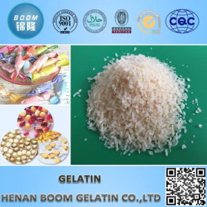 Food Grade Gelatin for Soft Candy pictures & photos