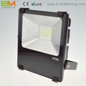 30W IP65 Waterproof High Power LED Floodlight with CE