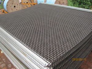 Quarry Screen Mesh for Mining (Screen001) pictures & photos