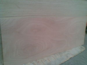 Door Skin Plywood Size 2150X1000X2.7mm 3mm 3.2mm 3.6mm pictures & photos