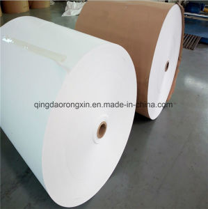 PE Laminated Paper for Starbucks Coffee Cups pictures & photos