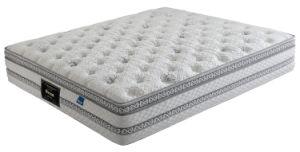 Back Healthy Comfort Pillow Top Memory Foam Mattress (WL211)