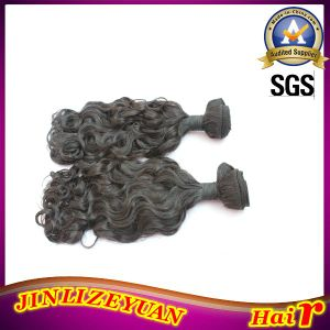 Yaki Human Hair Curly Weave Human Hair Weaving pictures & photos