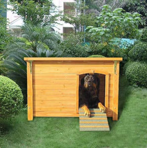 Outdoor Knennel with Sliding for Dog Playing Dog House pictures & photos
