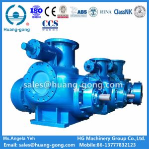 Stainless Steel Twin Screw Pump for Methanol Alcohol Transfer pictures & photos