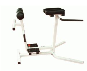 Fitness Equipment/Roman Chair & Back Extension (SW-8009) pictures & photos