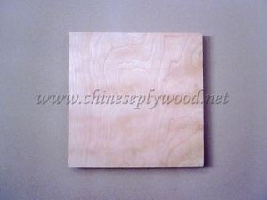 Maple Birch Plywood (ht-plywood-043)