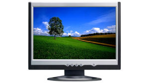 22 Inch Wide Screen LCD Monitor (LM220W)