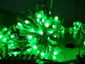 Fully Waterproof LED Pixel Lamp