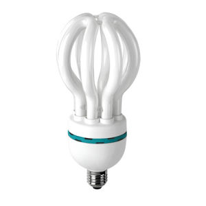 Energy Saving Lamp (CFL)