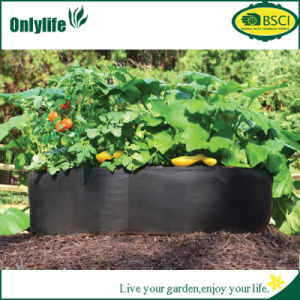 Onlylife Gardening PP PE Tomato/Vegetable Grow Bag Fabric Pots pictures & photos