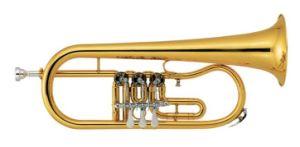 Rotary Flugelhorn (FL-200L) / Brass Intruments Flugelhorn pictures & photos