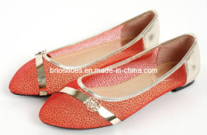 Fashion Women Flat Shoes with High Quality