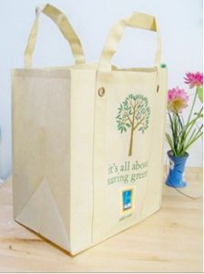 Nonwoven Ecological Bag/Shopping Bag